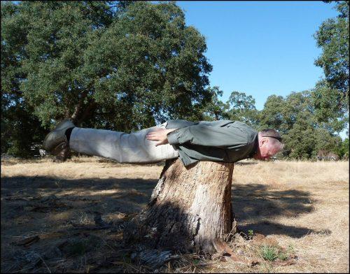 planking-925