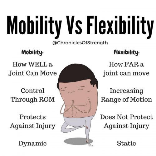 what is the difference between mobility and flexibility?