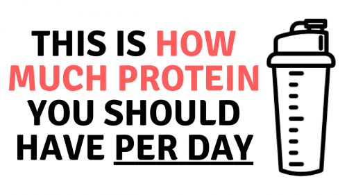 how much protein you should have per day